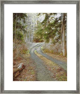 The Driveway Framed Print