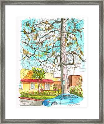 The Dry Tree In The Yellow House - Hollywood - California Framed Print by Carlos G Groppa