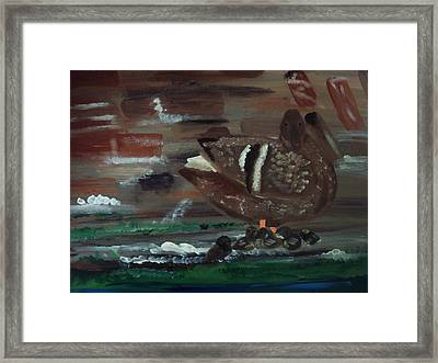 The Duck Framed Print
