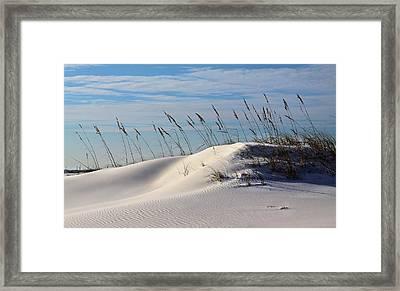 The Dunes Of Destin Framed Print