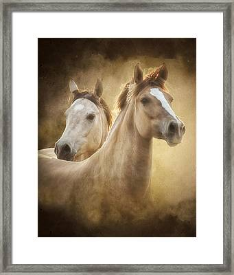 The Duns Framed Print by Ron  McGinnis
