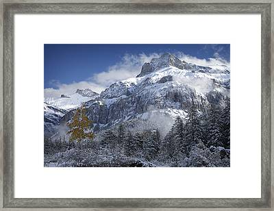 The Dwarf And The Giant Framed Print