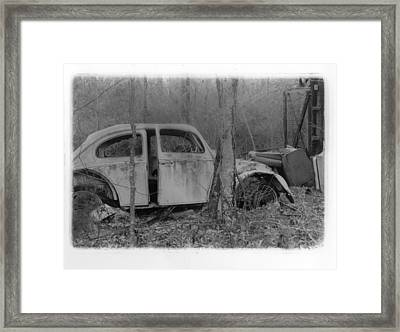 The Dying Beetle Framed Print