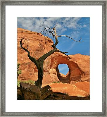 The Ear Of The Wind 2 Framed Print by Mo Barton