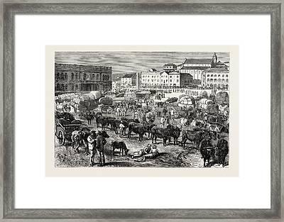 The Early Morning Market, Port Elizabeth Framed Print
