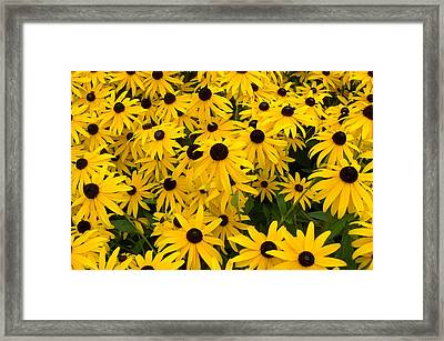 The Earth Laughs In Flowers Framed Print
