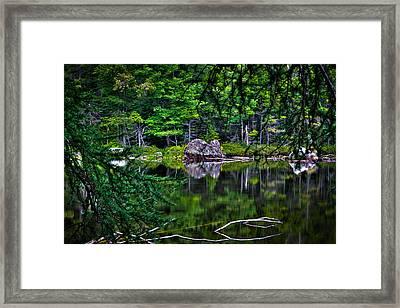 The East Shore Of Sis Lake Framed Print