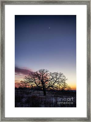 The Edge Of Space Framed Print