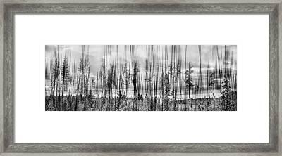 The Edge Of The Clear-cut Framed Print