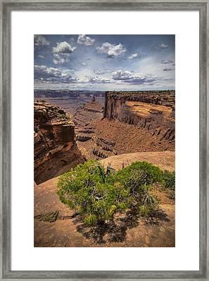The Edge Framed Print by Ryan Heffron