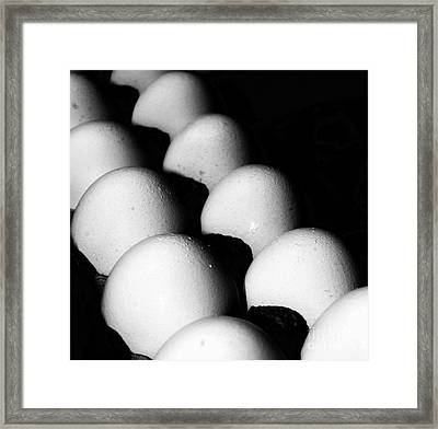 The Egg Brigade Framed Print by Jim Rossol