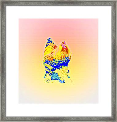 The Egg Warmer Is Flying Again  Framed Print by Hilde Widerberg