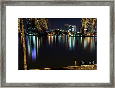 The Egrets View Framed Print