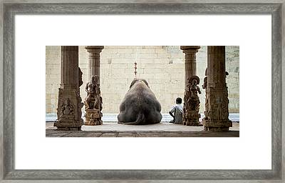 The Elephant & Its Mahot Framed Print