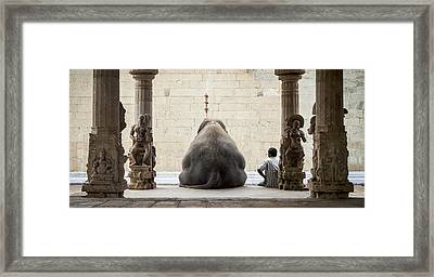 The Elephant & Its Mahot Framed Print by Ruhan