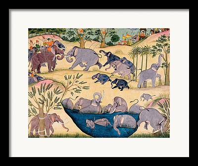 Elephant Drawings Framed Prints