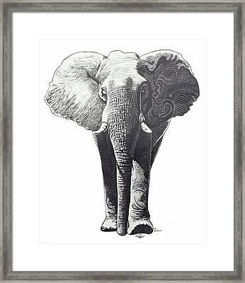The Elephant Framed Print by Kean Butterfield