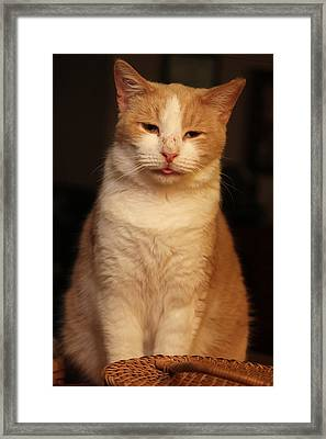 The Emperor Framed Print by Rdr Creative