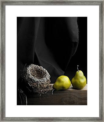 Framed Print featuring the photograph The Empty Nest by Krasimir Tolev