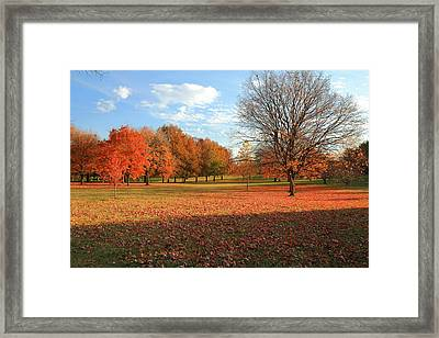 Framed Print featuring the photograph The End Of Autumn In Francis Park by Scott Rackers