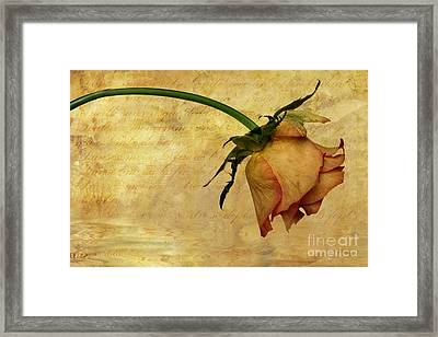 The End Of Love Framed Print by John Edwards