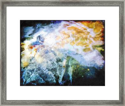 Framed Print featuring the photograph The Entanglement 3 by The Art of Marsha Charlebois