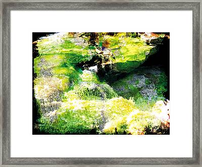 Framed Print featuring the photograph The Entanglement 5 by The Art of Marsha Charlebois