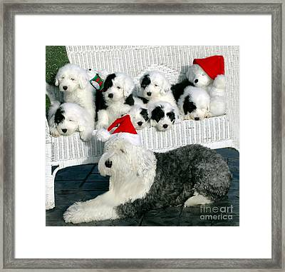 The Entire Family Framed Print by Kathleen Struckle