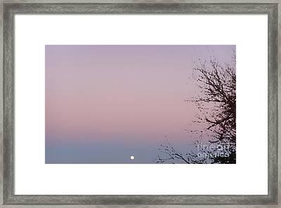 The Ephemeral Twilight Framed Print by Alexander Van Berg