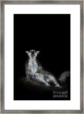 The Epiphany Framed Print by Ashley Vincent