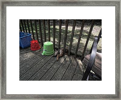 'the Escape' Framed Print