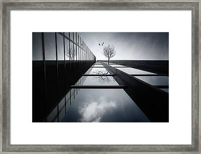The Ethereal Flying Garden Framed Print