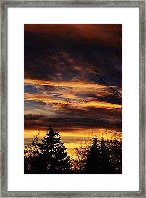 The Evening Sky Framed Print by Nikki McInnes