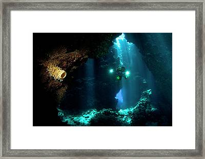 The Explorer Framed Print by Csaba Tokolyi