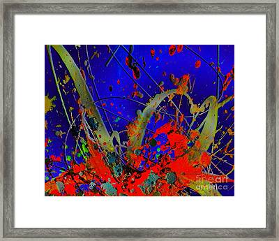 The Explosion Of Color Framed Print by Doris Wood