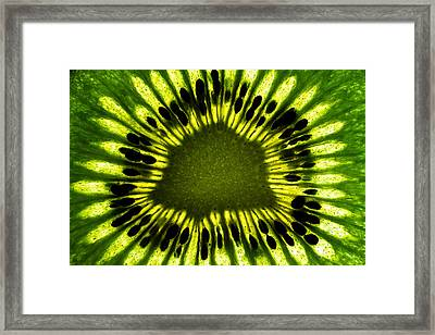 The Eye Framed Print by Gert Lavsen