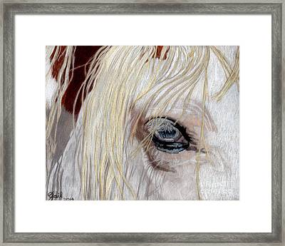 The Eye Has It Framed Print by Gail Seufferlein