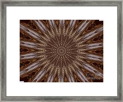 The Eye Of Pretense Framed Print