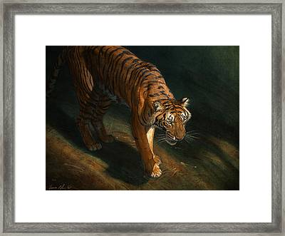 The Eye Of The Tiger Framed Print by Aaron Blaise