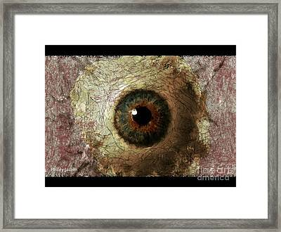 The Eyes 12 Framed Print by Holley Jacobs