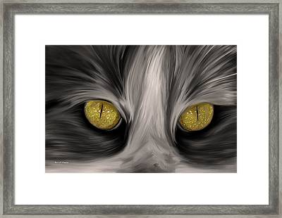The Eyes Have It Framed Print by Angela A Stanton