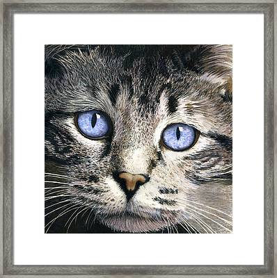 The Eyes Have It Framed Print by Ted Head