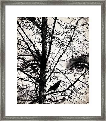 The Eyes Of The Raven Framed Print by Jacqueline Moore
