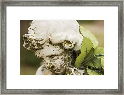 The Face Of An Angel Framed Print by Amber Kresge