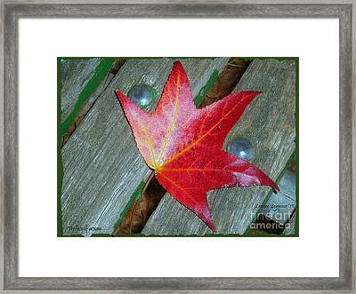 Framed Print featuring the photograph The Face Of Autumn by Leanne Seymour