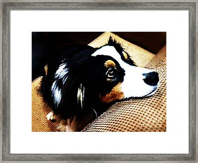 The Face Of Love Framed Print by Nancy E Stein