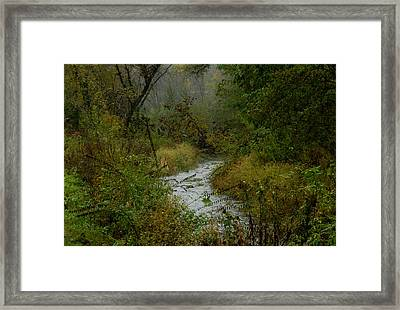 The Fae Crick Will Lead You Framed Print by Wild Thing