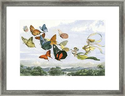 The Fair Queen Takes And Airy Drive In Fairy Land Framed Print by Unknown