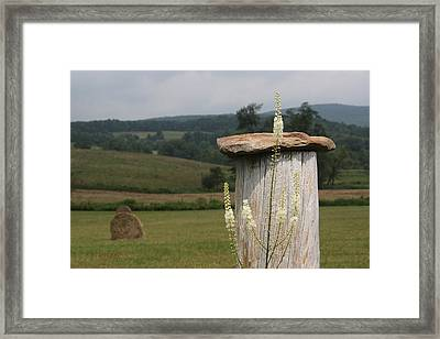 Fall Harvest Framed Print by Yvonne Wright