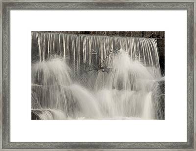 The Falls Framed Print by Cindy Rubin